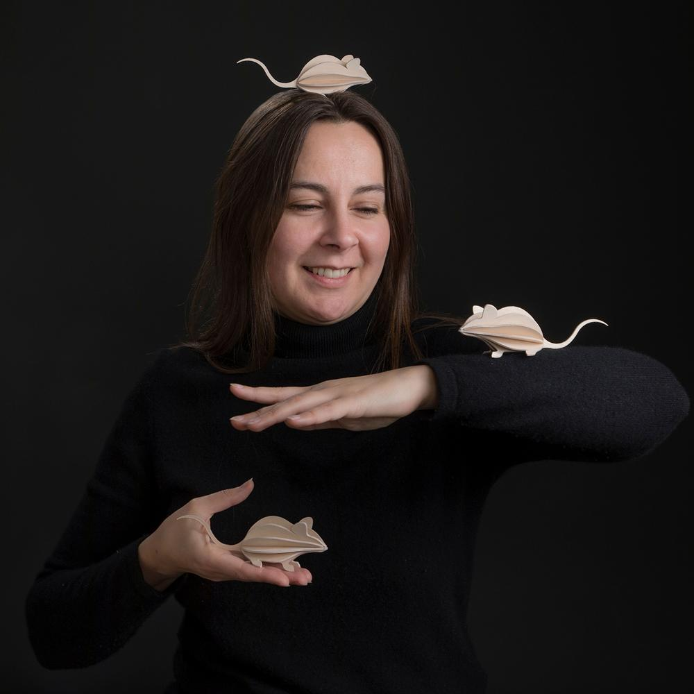 Lovi's story, Anne with the Lovi Mice